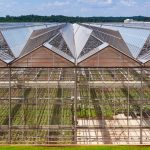 Metrolina Greenhouses Keeps Growing With Galvan